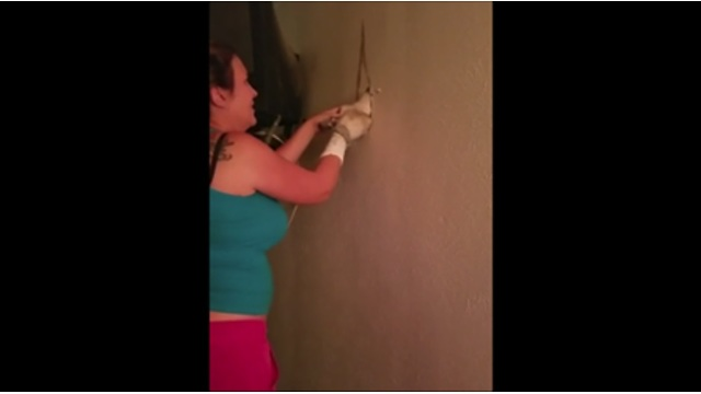 She Heard A Strange Noise From Inside The Wall, Couldn't Believe Her Eyes When She Opened It - Video