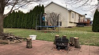 Iowa boy and his dog love jumping on the trampoline together