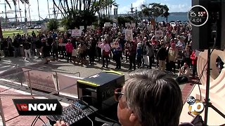 Protesters rally against national emergency declaration - Video