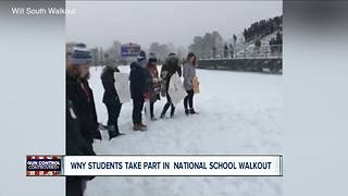 WNY students participate in national walkout - Video