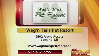 Wag'n Tails Pet Resort - 1/9/17 - Video