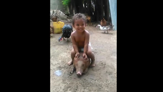 kid sitting on the pig gone wrong. funny video you really enjoy this video  - Video