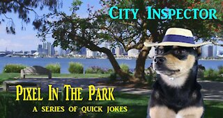 Pixel In The park...City Inspector