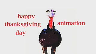 Turkey Bird Say - Happy Thanksgiving Day!  - Video