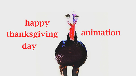 Turkey Bird Say - Happy Thanksgiving Day!