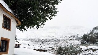 Snow way: Bizarre moment snow covers South African countryside during crippling drought - Video