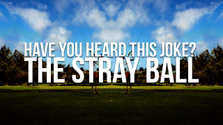 Have You Heard This Joke The Stray Ball - Video