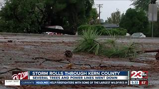 Several trees and power lines down after storm in Bakersfield - Video