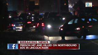 Deadly crash involving pedestrian shuts down I-805 in Lincoln Park area - Video