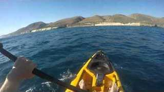 Fisherman Rows His Kayak Not So Merrily After Beating A Hammerhead Shark  - Video