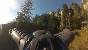 Wingsuit proximity flight through trees - Video