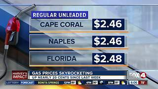 Gas prices jump overnight in Southwest Florida