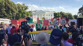 Crowd Boos Outside White House after Trump Announces Paris Climate Pact Withdrawal - Video