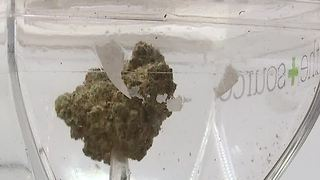 Henderson getting into recreational pot business - Video