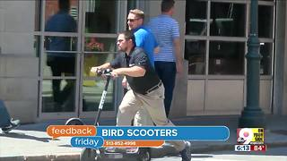 Feedback Friday: Shayna Hubers, John McCain and bird scooters - Video