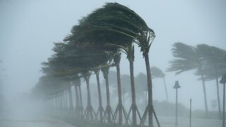 Here's What A Hurricane's Category Signifies