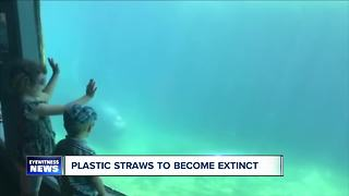 Plastic straws are becoming extinct - Video