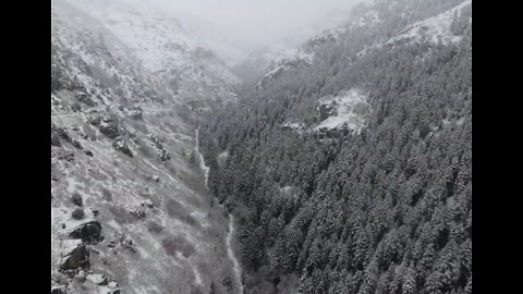 Stunning Snow-Capped Forest in Northern Utah Captured From the Air