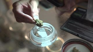 A shop along Highway 395 is challenging the marijuana industry - Video