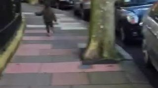 Stealthy kid escapes from leash, takes off down the street - Video
