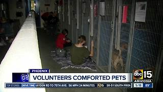 July 5: Busiest day for animal shelters - Video