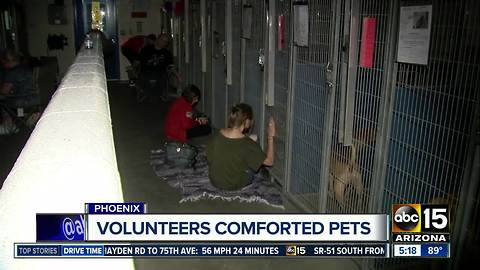 July 5: Busiest day for animal shelters