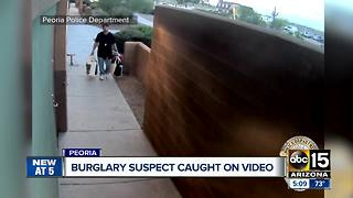 Peoria police looking for burglary suspect caught on video - Video