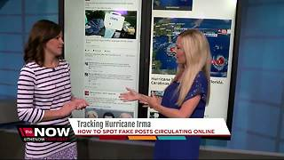 Tracking Hurricane Irma: How to spot fake posts circulating online