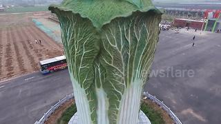 China unveils giant cabbage-shaped sculpture