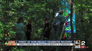 Hundreds gather in Baltimore County park to paint trees to celebrate addicts in recovery - Video