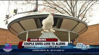 UFO chicken coop - Video
