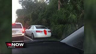 Back-to-school traffic in the Tampa Bay - Video