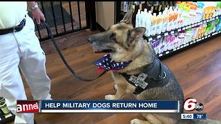 Help military dogs find loving homes