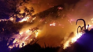 Thomas Fire Scorches Over 50,000 Acres in Ventura, California - Video