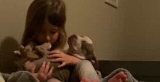 Little girl sings her puppy to sleep