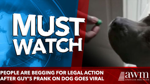People Are Begging For Legal Action After Guy's Prank On Dog Goes Viral. Do You Agree?