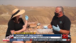 Science Sundays: Digging Up Discoveries