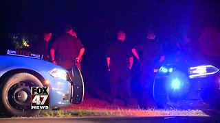 Driver crashes, flees after police pursuit - Video