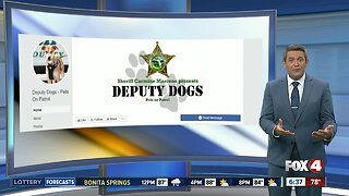 Lee County Sheriff launches new Facebook page for 'Deputy Dogs'