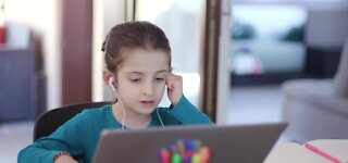 Distance learning is a struggle for many students
