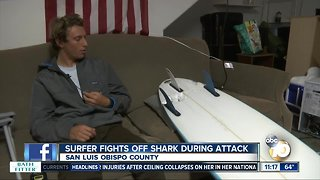 Surfer fights off shark