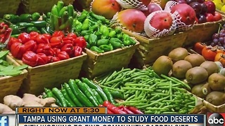 Community health project aims to fight food deserts - Video