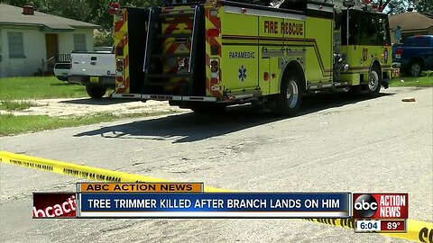 Tree trimmer killed by large branch in Hillsborough County, first responders on scene