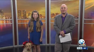 """""""Annie"""" the Musical - playing at the Wick Theatre"""