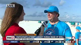 National Sea shell Day on Fort Myers Beach - Video