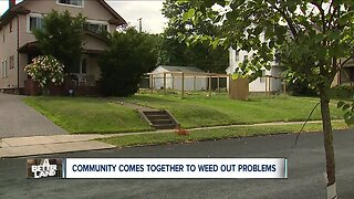 Cleveland Heights community works to rebuild garden uprooted by vandals
