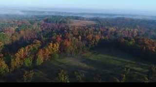 Drone Footage Captures Fog Wall Over Ridge Spring, South Carolina - Video