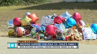 Fundraiser under way to help family of boy killed by drunk driver - Video