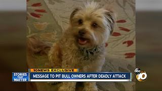 Message to Pit bull owners after deadly attack - Video