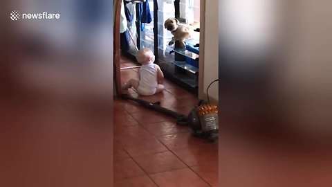 Adorable moment puppy and baby break into house